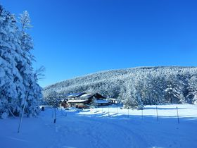 長野で雪山初級チャレンジ!北八ヶ岳の東・西天狗岳で感動登山を|長野県|トラベルjp<たびねす>