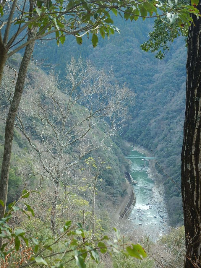 武庫川と廃線跡を見下ろしながら桜の園へ