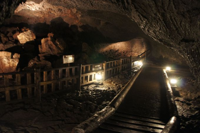 さあ、冒険の始まり!暗くて狭い通路が伸びる洞穴の中