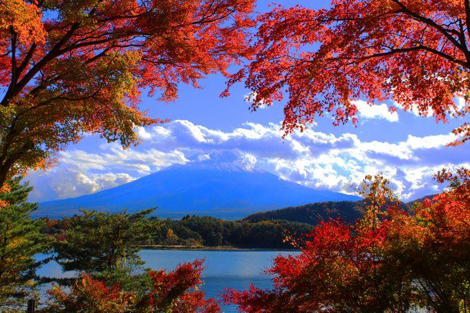 紅葉トンネルから望む富士山と河口湖
