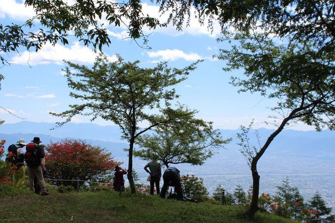 中腹からレンゲツツジや富士山が見られます。