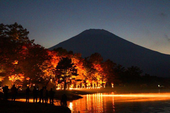 夕闇に浮かぶ富士山と山中湖の紅葉
