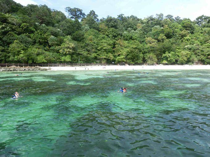 「パヤ島」ってどんな所?マレーシアの小さな島に溢れる魅力