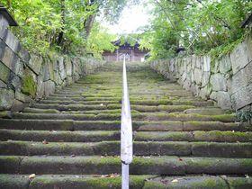 高松市仏生山(ぶっしょうざん)「法然寺」に隠れる3つの不思議!|香川県|トラベルjp<たびねす>