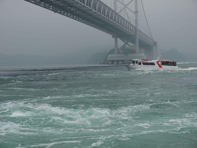 渦潮の中を観光船で横断する迫力満点の観潮クルージング!