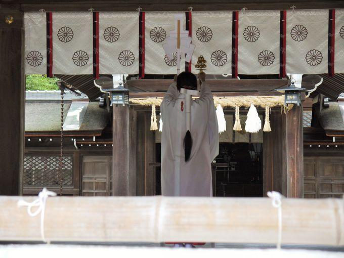 「伊弉諾神宮」はイザナギが余生を過ごしたと言われる場所
