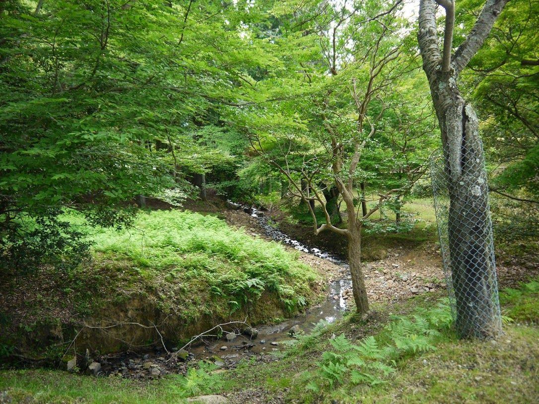 東大寺の大湯屋の前に流れる小川で待機