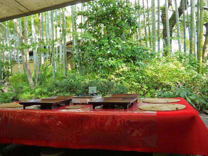 目の前に広がる鮮やかな緑の竹林!これも最高のご馳走!!