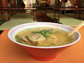 大阪名物「金龍ラーメン」!これが大阪の味!道頓堀の味や♪