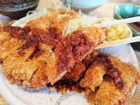 犬山でおすすめランチ!味噌カツなら地元民で満席とんとん亭|愛知県|トラベルjp<たびねす>