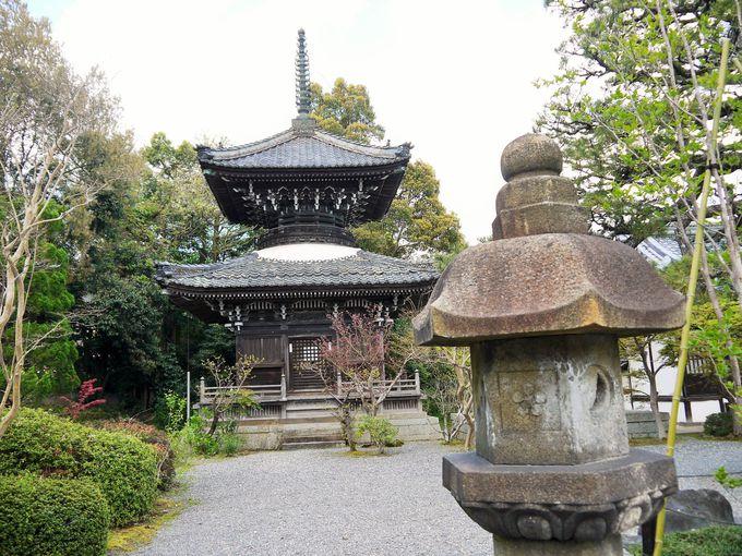 多宝塔を借景とした見事な穴太寺庭園