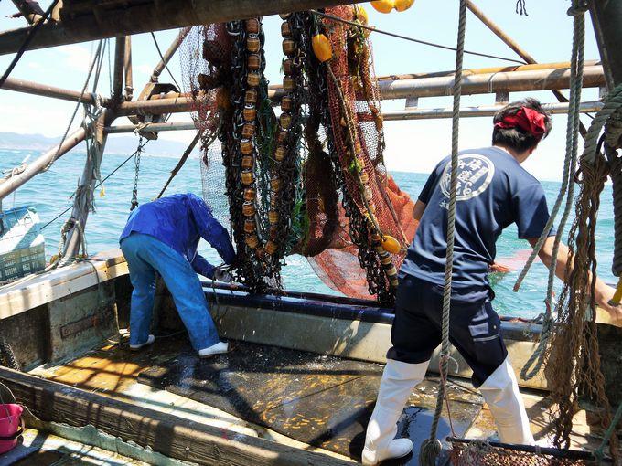 漁師体験!ここから「底曳き漁」の始まり