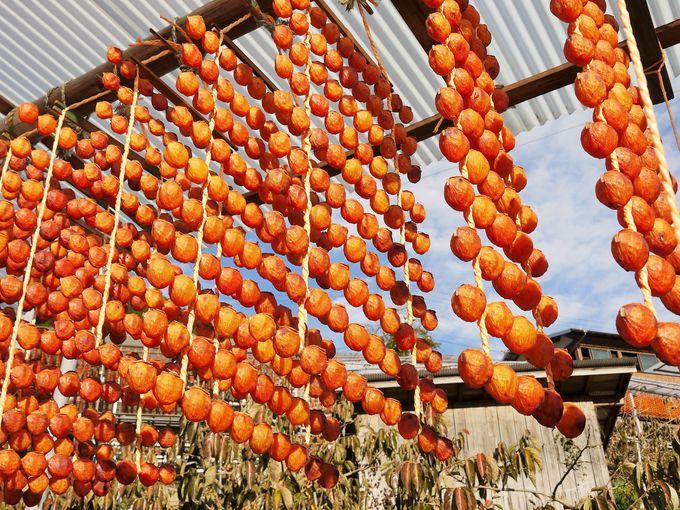 四郷地区の「平」で見るオレンジ色のカーテン