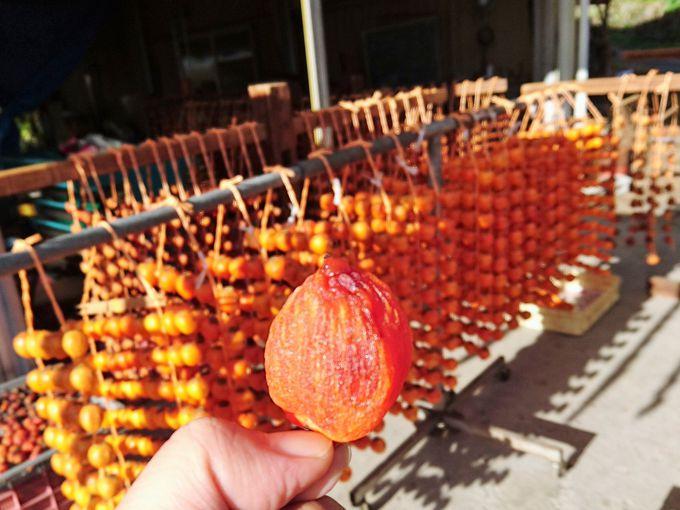 串柿は非買品。干し柿は買って帰るべし!