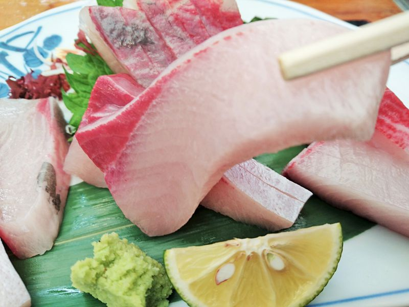 うまい魚は徳島で!漁協食堂うずしお「すだちぶり」刺身定食は絶品