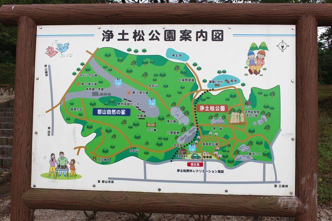 目指すは浄土松公園(じょうどまつこうえん)