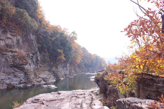 九州まで続く地層・長瀞の岩畳で紅葉を楽しもう