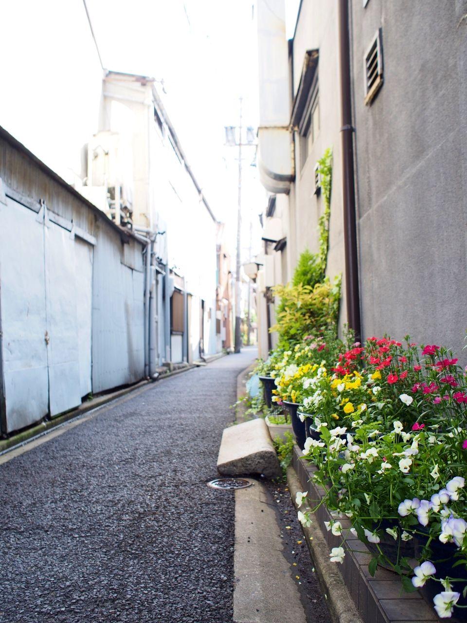 名古屋城の城下町の風情を感じる「四間道(しけみち)」散策
