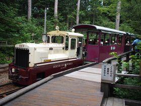 マイナスイオン全開!木曽「赤沢森林鉄道」は走る森林セラピー!|長野県|トラベルjp<たびねす>