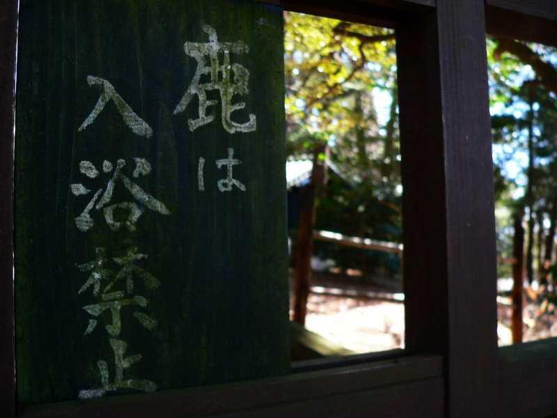 鹿は入浴禁止!丸尾温泉「旅行人山荘」
