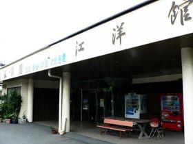大隅半島一と呼ばれる海潟温泉「江洋館」|鹿児島県|トラベルjp<たびねす>