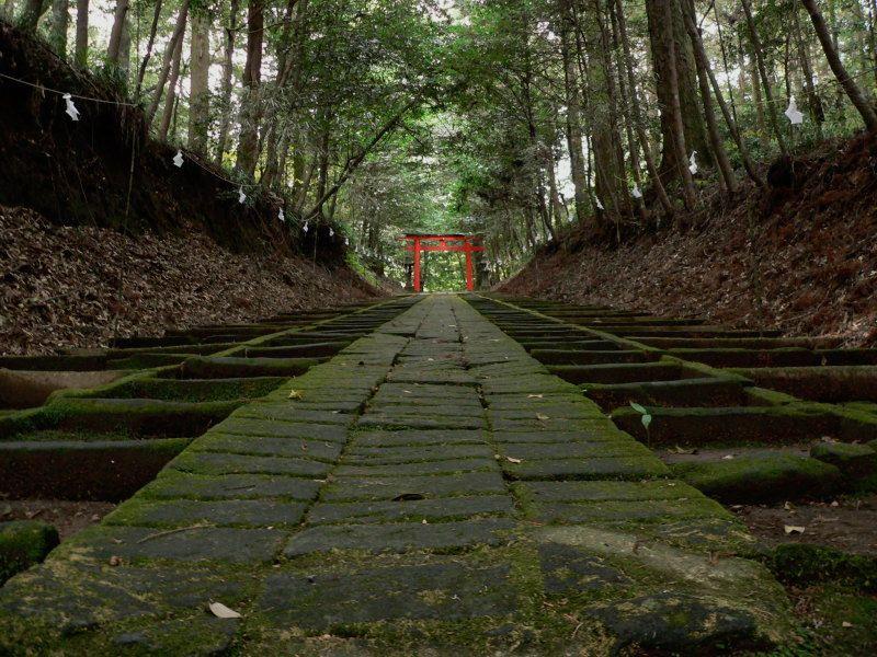 苔むした参道が身を清める!霧島岑神社