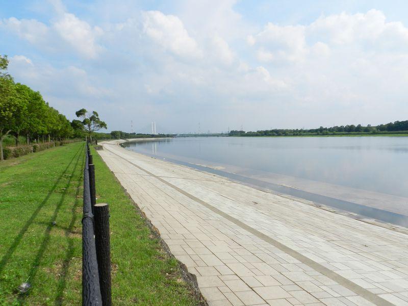 埼玉県の南端にある水郷公園! 戸田市『彩湖・道満グリーンパーク』