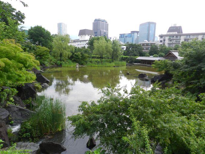 江戸文化の薫る池の畔で、ちょっと一休みしませんか?