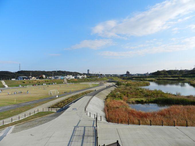 右手にビオトープ、左手にサッカー場。自然と親しめるスポーツ公園です
