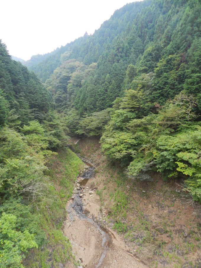 眼下に見下ろす大渓谷! これでも神奈川県内です
