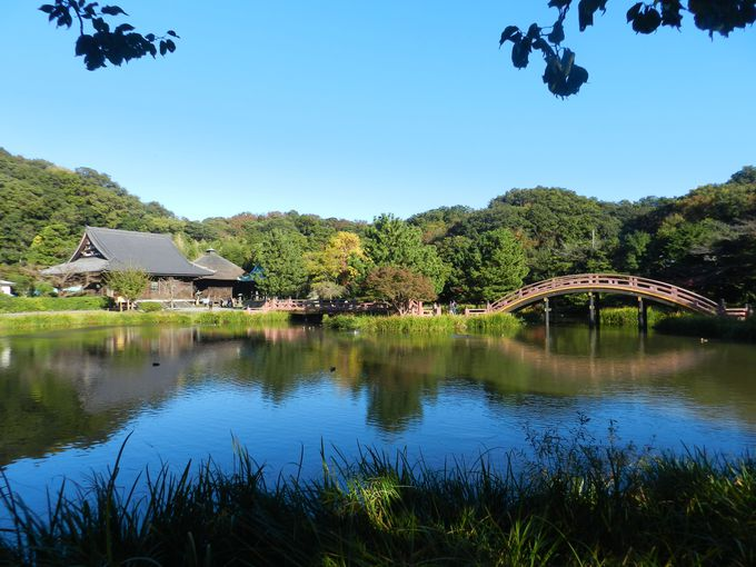 —称名寺市民の森— 森と泉と、そして歴史と