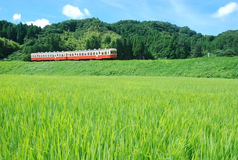 ローカル鉄道で房総横断!懐かしい里山風景の中で心癒される旅を