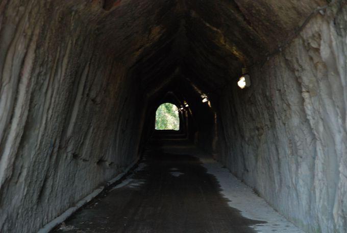 夏でもヒンヤリ、房総名物の素掘りのトンネル