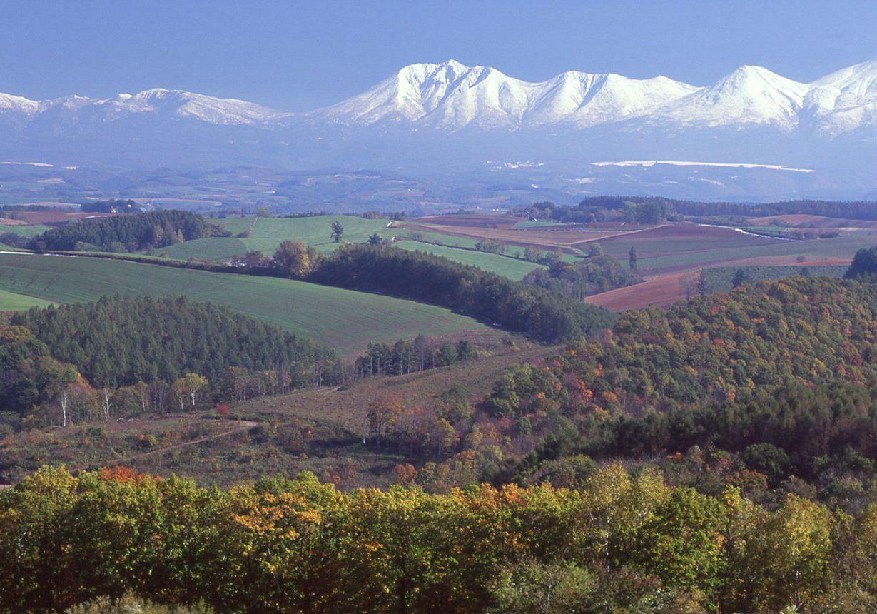 美瑛全域を見渡せる五稜の丘からスタート!