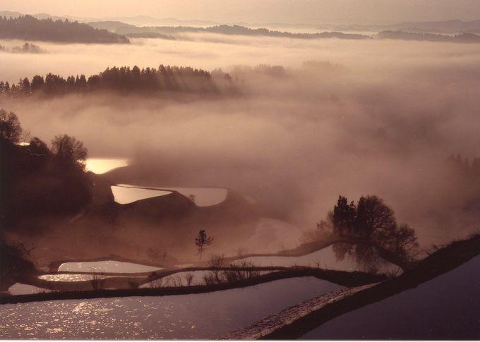 日本棚田百選の中でも屈指の絶景!星峠の棚田