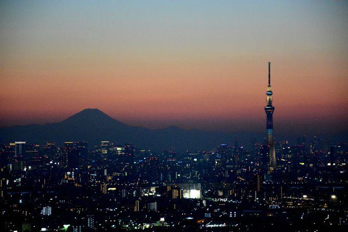 都心のビルに明かりが灯り、パノラマ大画面は夜景のシーンへ!