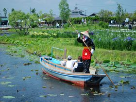 開放感あふれる水辺の里 香取市「与田浦」を散策しよう!|千葉県|トラベルjp<たびねす>
