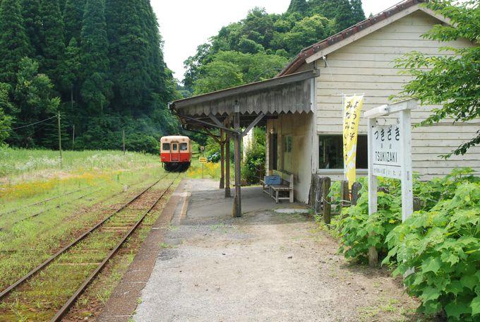 地層へのアクセスはローカル線「小湊鐡道」の月崎駅から