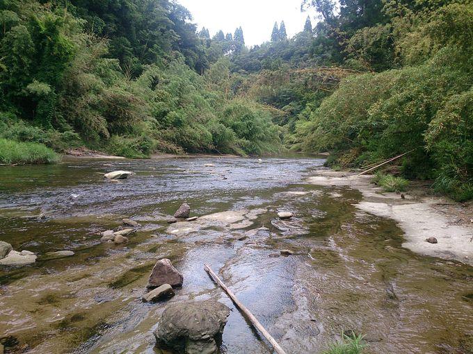 森と川に囲まれて地球のロマンを感じる!