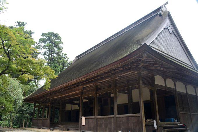 国指定重要文化財の建築物が四つ。特に「講堂」の大屋根がすごい!