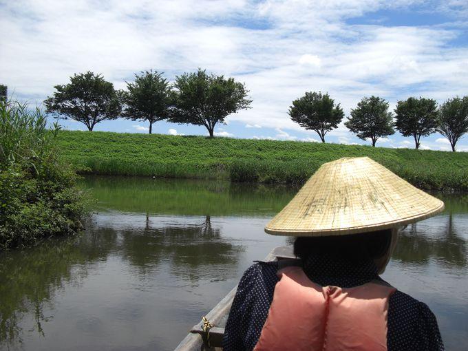 谷田川は葦や、アケビ、クルミの木に囲まれ、穏やかに流れている」