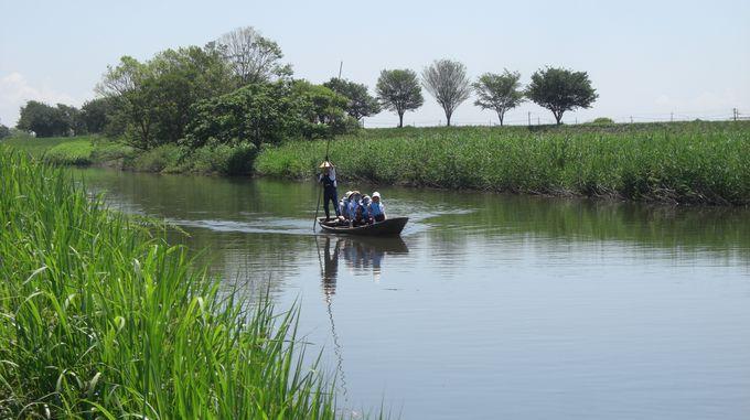 長さ5mの竹竿で操る揚舟!聞こえるのは鶯の声と風の音