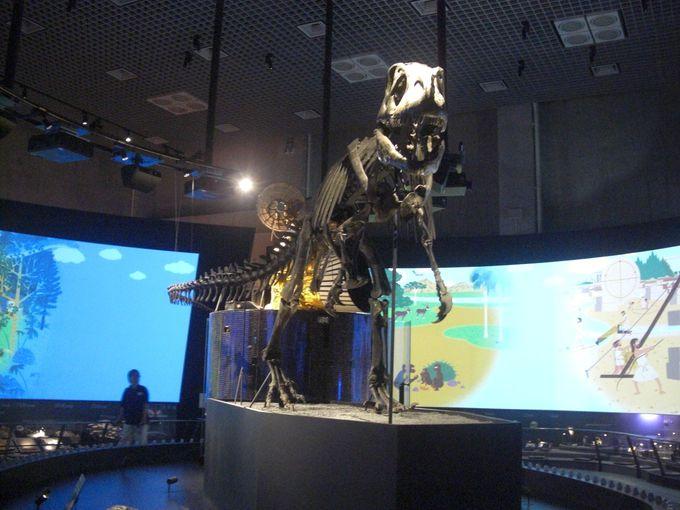地球館のシンボルゾーンが新設!1階は地球史ナビゲーターと地球の多様な生き物たち