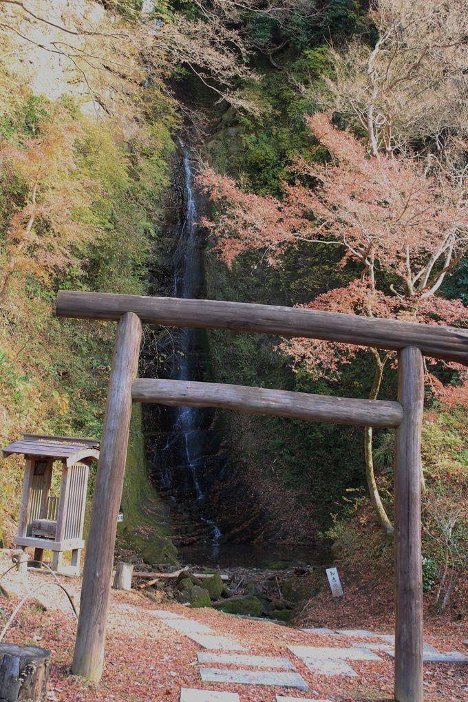 最奥の金神の滝は落差35メートルの新名所!自然が削り出した養老渓谷