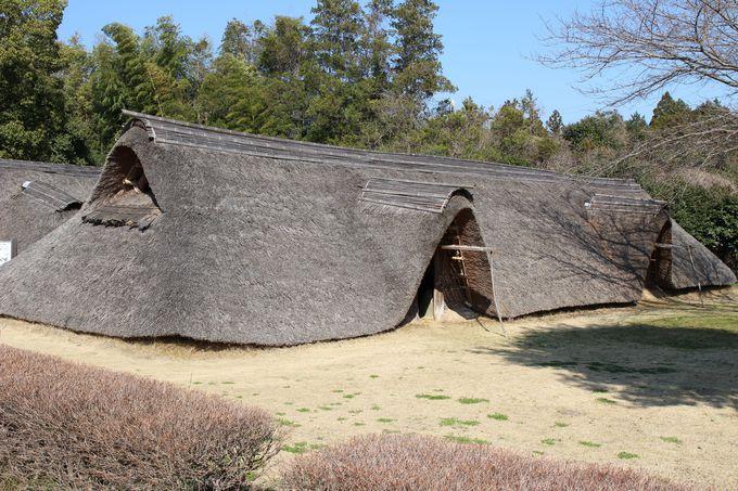 奈良時代、蝦夷征討の武器製作の兵站基地であった「鹿の子C遺跡」