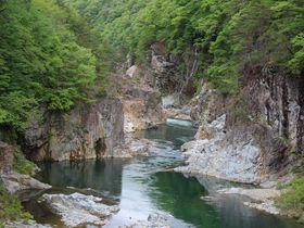 鬼怒川の渓谷美と森林浴の散策路!栃木県日光市「龍王峡」