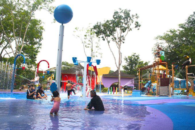 暑いシンガポールにぴったりのオアシス!Wet Play Area
