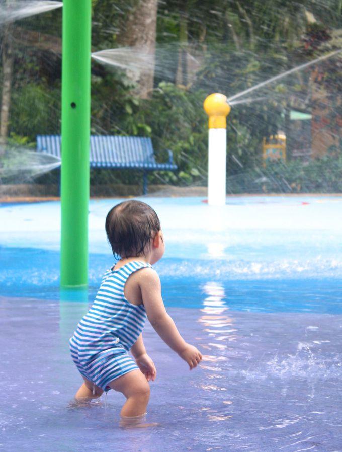 赤ちゃん連れは注目!ハイハイ&よちよち歩きでも遊べる深さ