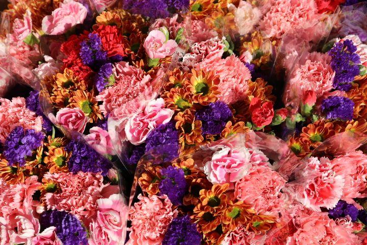 みずみずしい花がびっしり!フラワー・マーケット・ロード