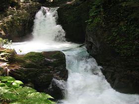 滝と森林でダブルの癒し効果!下呂市「小坂の滝めぐり」